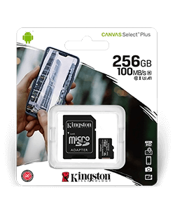 Kingston MicroSD Karte 256GB Class 10
