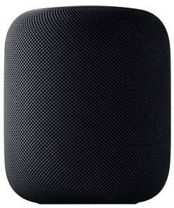 Apple Homepod grau