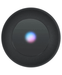 Apple Homepod spacegrau