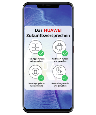 Huawei Mate 20 Pro Dual SIM Black Frontansicht