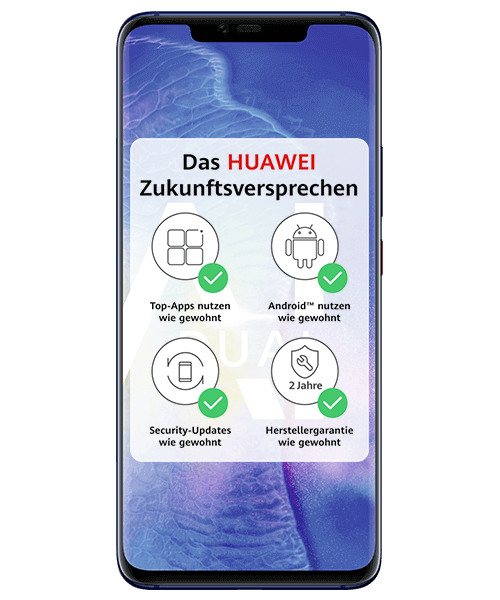 Huawei Mate 20 Pro Dual SIM Frontansicht